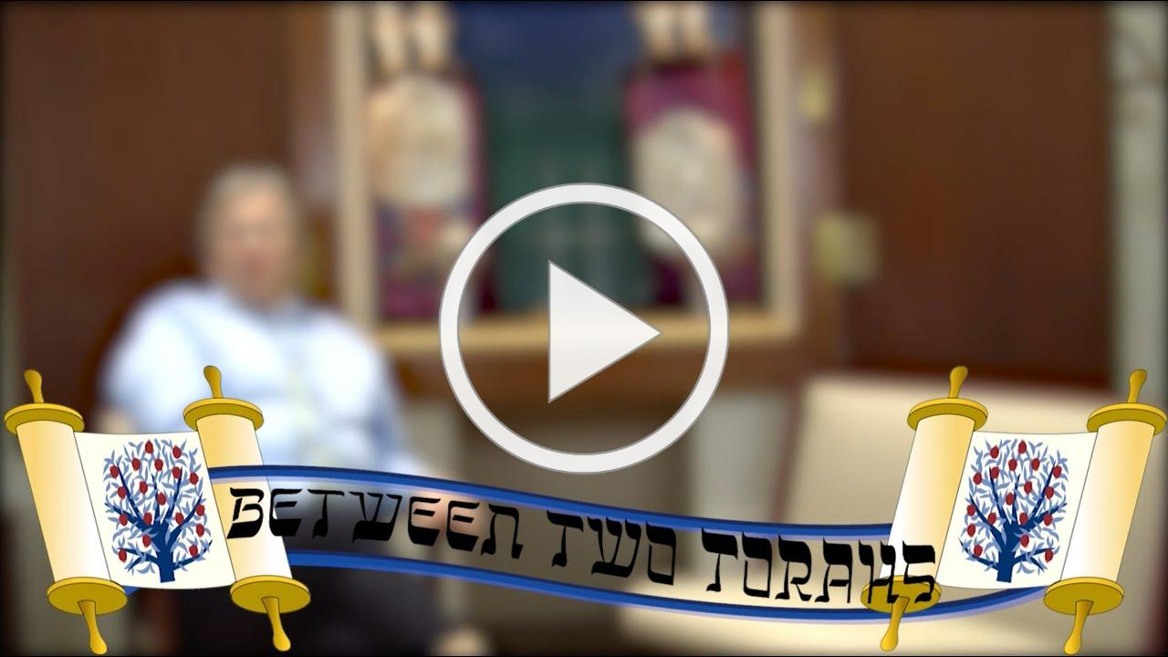 Temple Emanu-El Purim & Megillah Reading