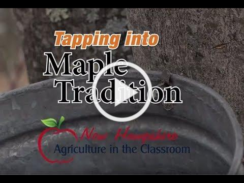 Maple Education Video