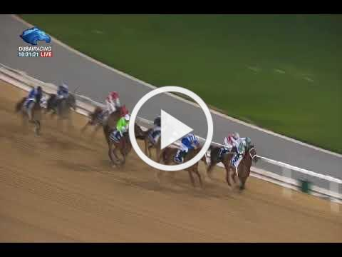 Racing at Meydan | Al Maktoum Challenge R1 G1 - 11\01\2018 - Paddy's day