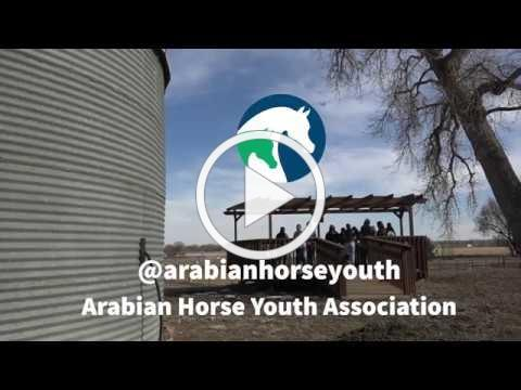 AHYA Youth Board Volunteer Project