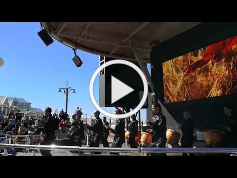 World Tai Chi Qigong day - Cape Town