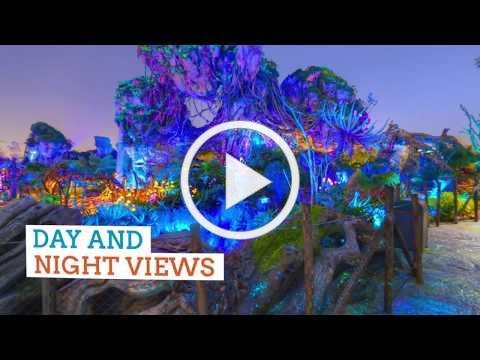 Orlando Virtual Tours | Visit Orlando