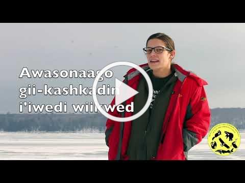 Red Cliff Ojibwe Phrase of the Week 12/23/2019