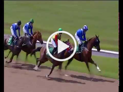 Wolverhampton 10th June - The Royal Cavalry of Oman Open Maiden Stakes