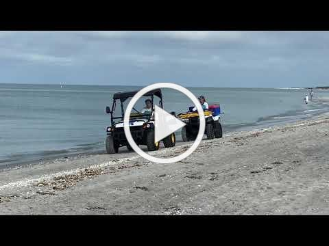 2020 SCCF Sea Turtle Monitoring & Social Distancing