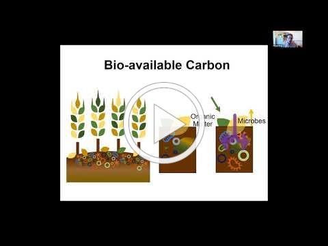 Digging Into Soil Health 2.0 - Measuring Soil Improvement w/ Jean Eells, Emily Waring & Morgan Davis
