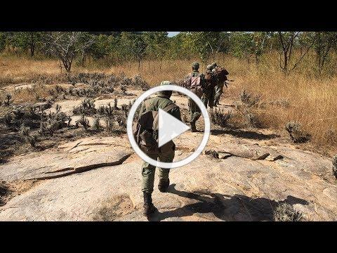 Niassa Elephant Defenders: Parts I & II