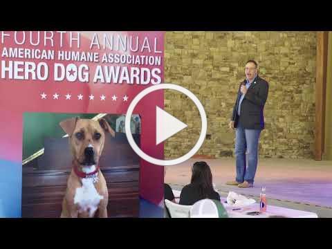 Pup-a-Palooza 2017
