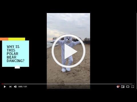 Dancing Polar Bear - Plunge for Hunger