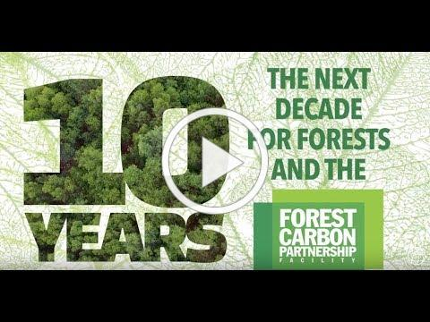 The Next Decade for Forests and the Forest Carbon Partnership Facility (FCPF)