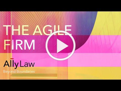 Ally Law - SuperConference - The Agile Firm