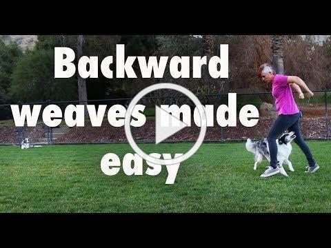 Backward weaves made easy - Dog Tricks