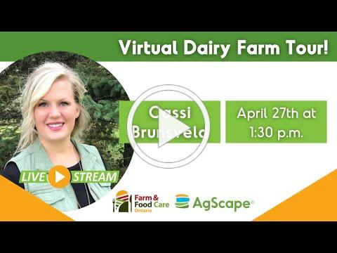 Virtual Food and Farm Tour: Dairy Farming with Cassi Brunsveld