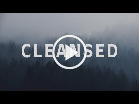 Cleansed with Lyrics (Charity Gayle) | People and Songs