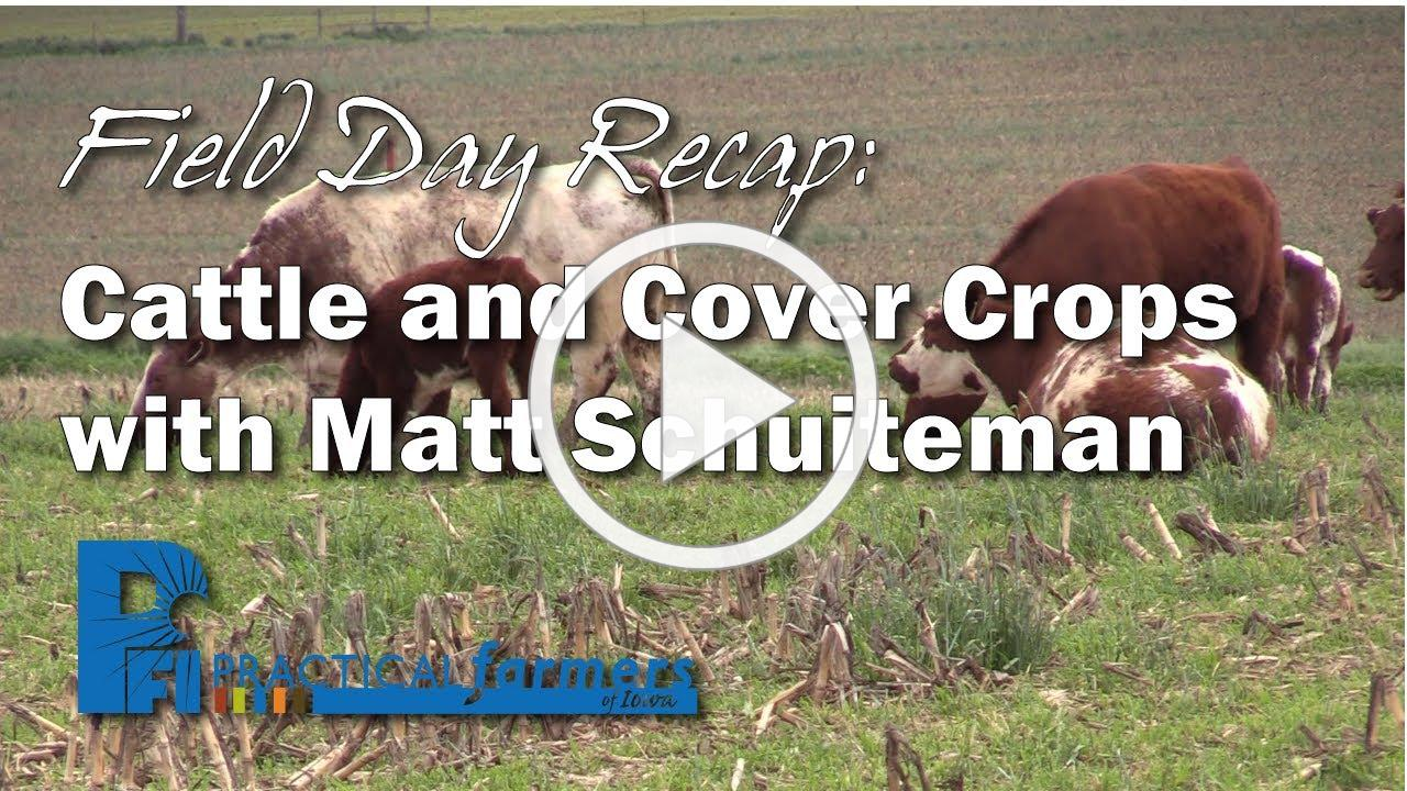 Field Day Recap: Cattle and Cover Crops