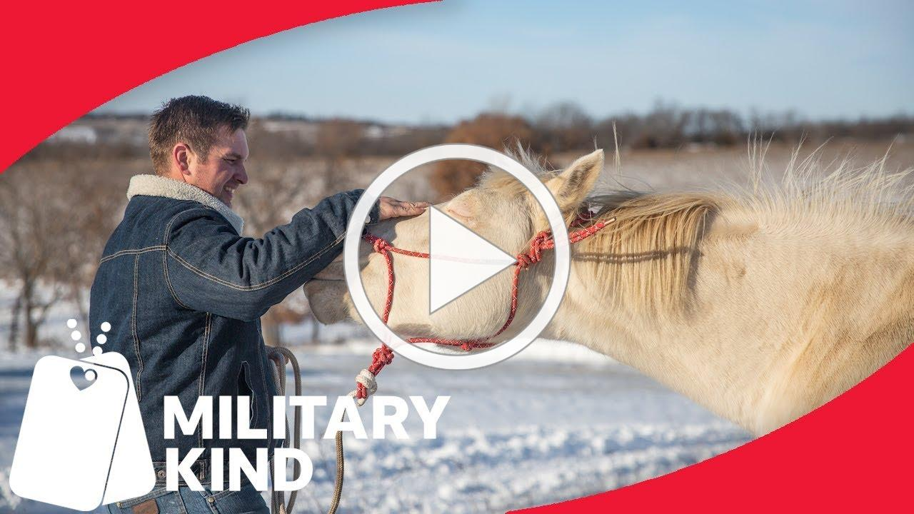 Veterans and traumatized horses find peace in each other