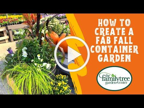How To Create A Fab Fall Container Garden