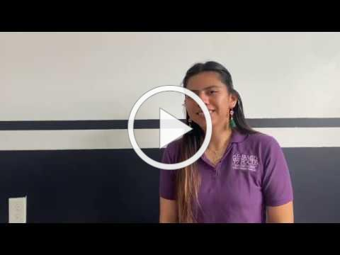 Virtual Play. Learn. Connect. Family Focus Parents As Teachers (English)