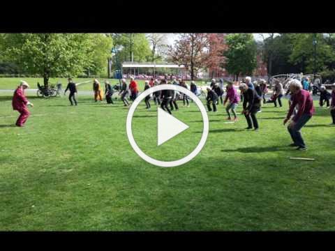 Wereld Tai Chi Dag 2017 Valkenbergpark Breda
