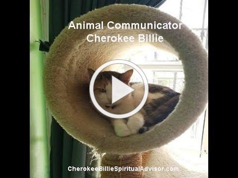 Animal Communicator Cherokee Billie