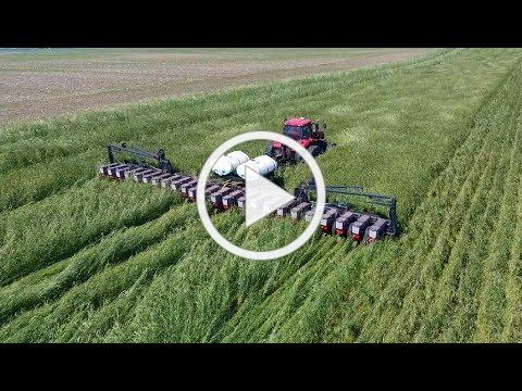 Planting Green into Cereal Rye