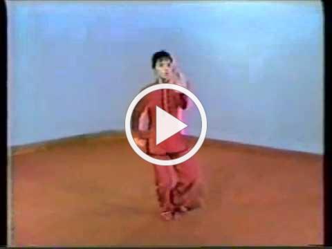 Master Aiping Cheng - Sun Style Tai Chi