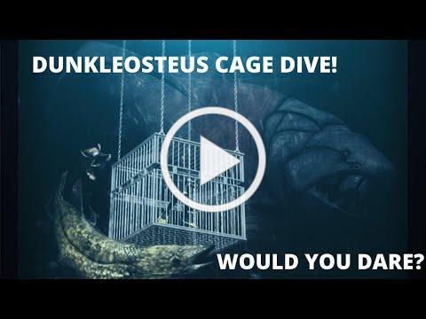 Dunkleosteus Cage Dive at Sea Monster Cove #prehistoric #theMeg #Dunkleosteus