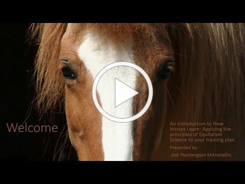 An Introduction to How Horses Learn with Zoë Thorbergson