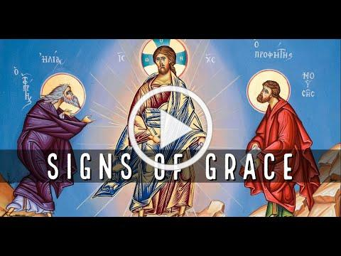 Signs of Grace, with Deacon Matt Newsome