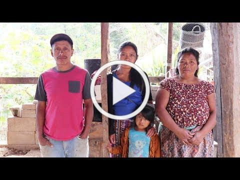 First Look | Suruy Family | 60499