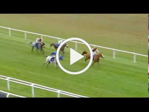 Shadwell Arabian Stallions Hatta International Stakes (Group 1 PA) - Newbury 29th July Race 5