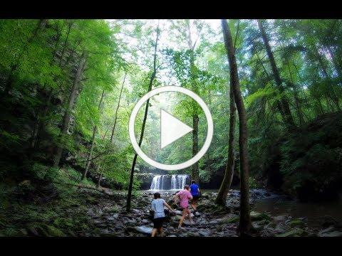 Hike to SYCAMORE FALLS (July 2019)