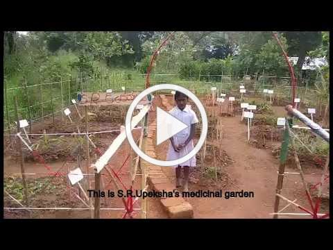 Sri Lanka Charity - Children's gardens: Upeksha's garden of medicinal plants