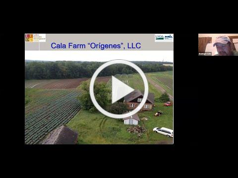 Navegando los Primeros Pasos de Cultivo: Producción de Vegetales Orgánicos y Acceso a la Tierra
