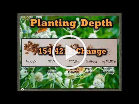 MWAEBF Webinar Series: Monarch and Native Pollinator Habitat Management