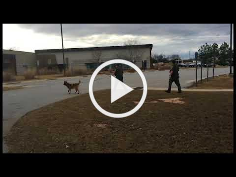 Perry Police Department K-9 Unit Training