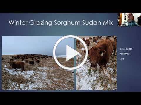 Contract Grazing Cover Crops for Winter Feed - Farminar