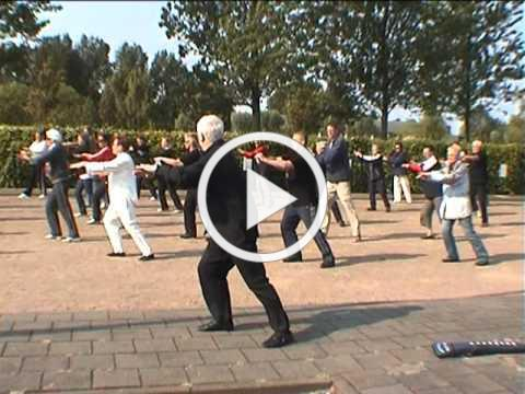 World Tai-Chi-Day 2011 maassluis Holland.mpg part two