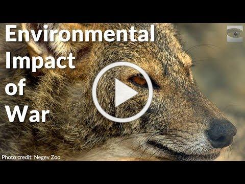 Environmental Impact of War