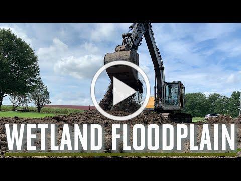 Trap White Wetland Creation