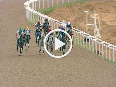 19/08/2018 Chelmsford ARO Race 5