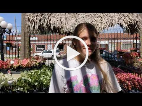What's at Tom's Thumb Nursery