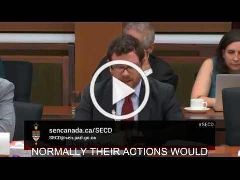 ICLMG Senate testimony on Bill C-59, the National Security Act