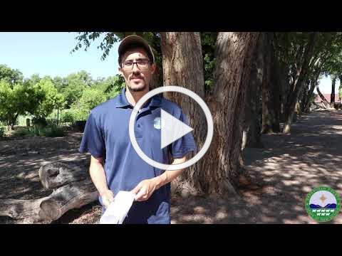 Bernalillo County Open Space Etiquette