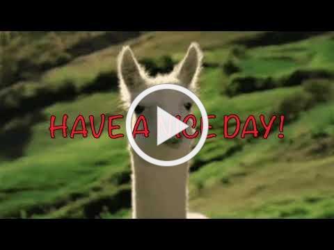 Llama Llama Meets the Babysitter by Anna Dewdney