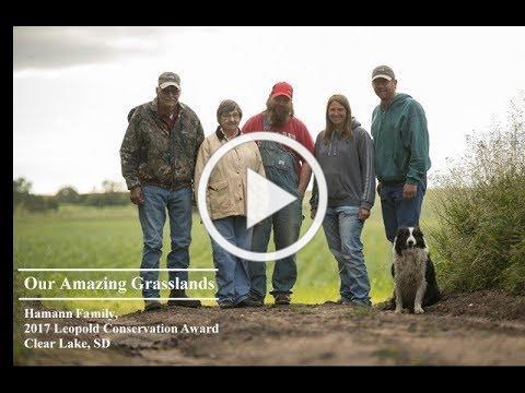 Our Amazing Grasslands ~ Hamann Ranch
