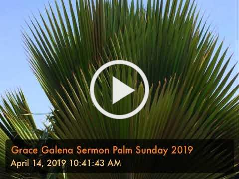 Grace Galena Sermon Palm Sunday 2019