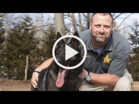 Police K-9 Finds its Home in Sweet Home Alabama