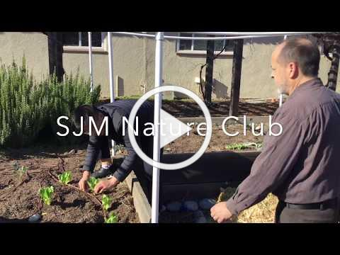 Nature Club Feature