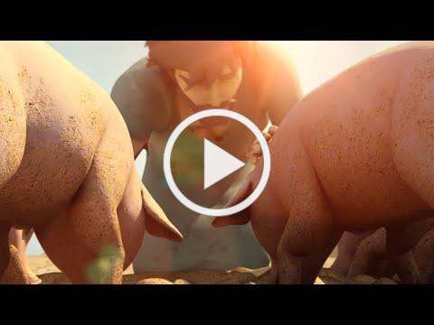 Superbook - The Prodigal Son - Season 2 Episode 12 Full Episode (Official HD Version)